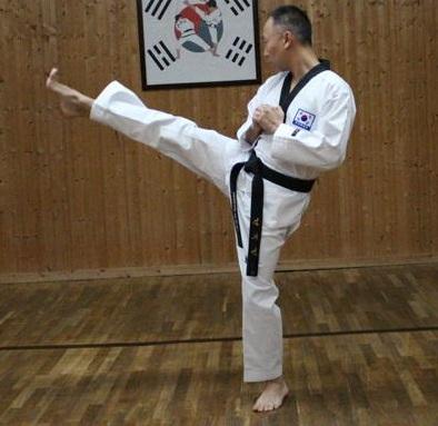 Ap Chagi (Front Kick)