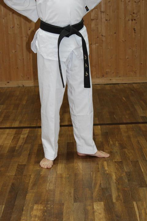 Wen seogi (left hand stance)