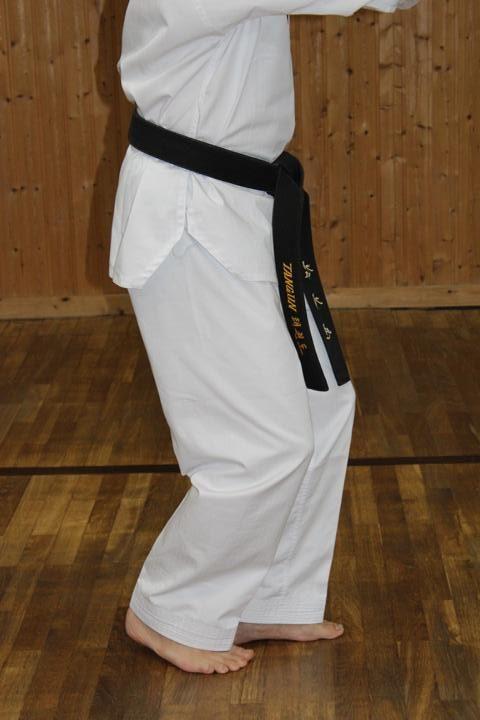 Kyotdari Seogi (Assisting Stance)